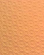 070906_orange.jpg