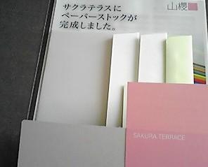 081030_sakura.JPG